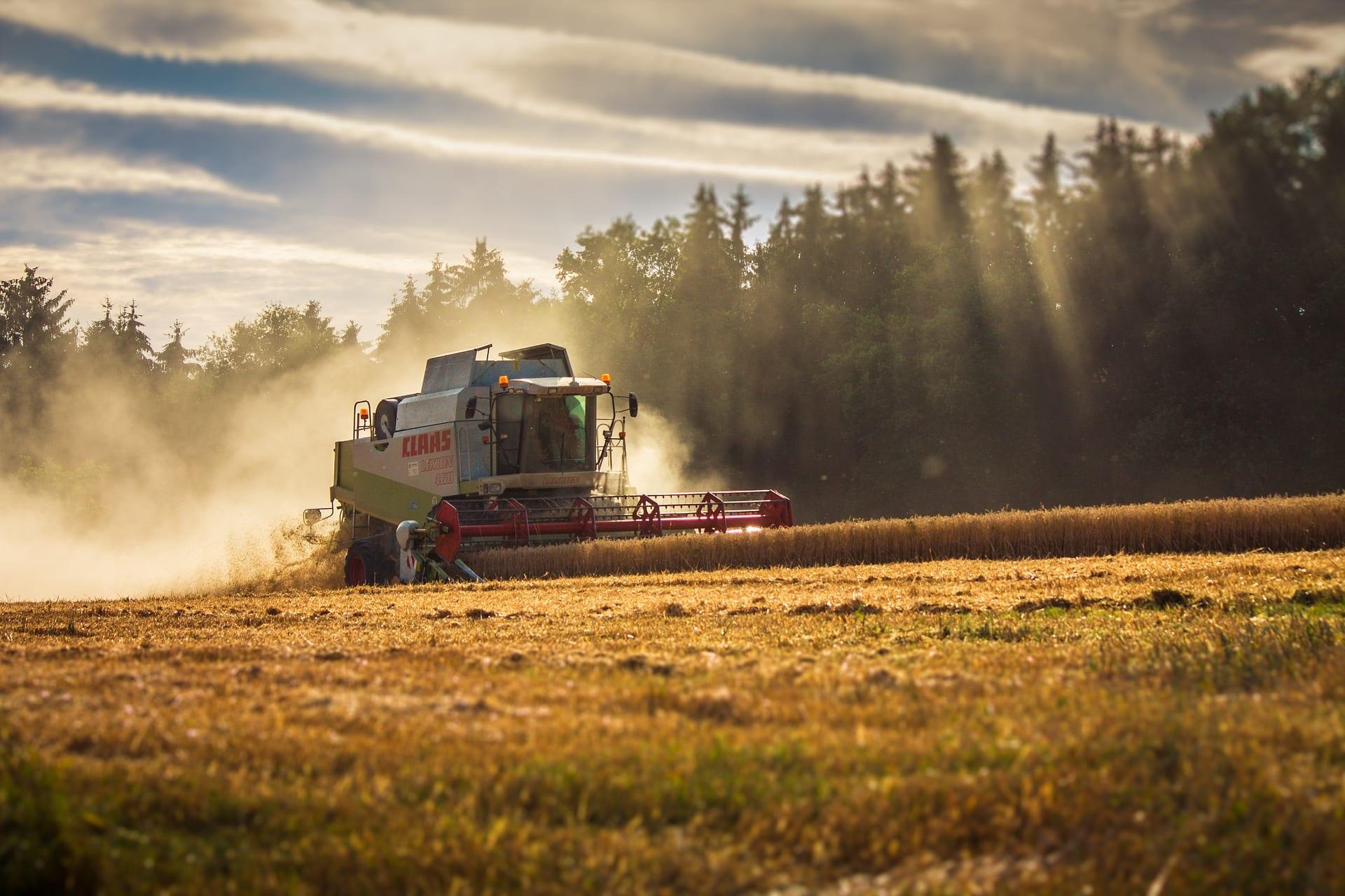 transientbeskyttelse-landbrug-lindved